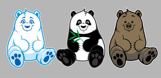 婴孩棕熊、北极熊和熊猫 图库摄影
