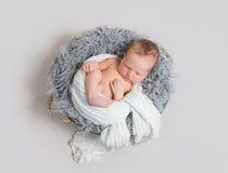 婴孩睡觉一半包裹与白色围巾 免版税图库摄影