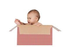 婴孩箱子 库存图片