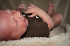 婴孩粉刺 库存图片