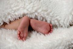 婴孩英尺 库存图片