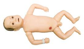 婴孩解剖学 学习培训的医学模型学员 免版税库存图片