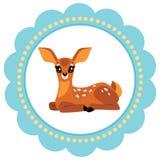 婴孩逗人喜爱的鹿 库存照片
