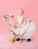 婴孩,桃红色樱花,在婴儿推车 免版税库存图片