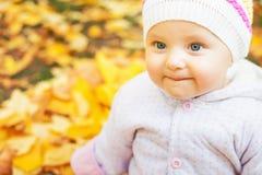婴孩画象秋天公园的有黄色的离开背景 库存图片