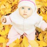 婴孩画象秋天公园的有黄色的离开背景 免版税库存图片