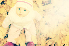 婴孩画象秋天公园的有黄色的离开背景 免版税库存照片