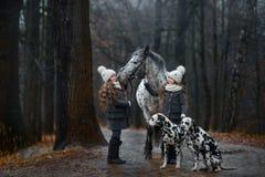 孪生与阿帕卢萨马马和达尔马提亚狗狗的女孩画象 库存图片
