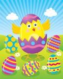 孵化从鸡蛋的复活节小鸡 库存照片