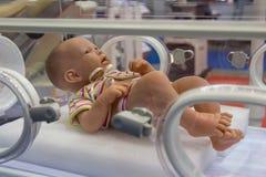 孵养器的时装模特婴儿 免版税库存照片