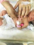 孵养器的耐心新出生的婴孩 库存图片