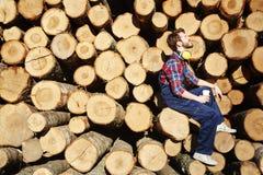 宁静的树工作者 库存图片