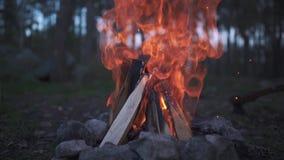 它与的火惊人的长的火焰和轴在地面在此附近 令人惊讶的篝火燃烧在森林里 股票录像