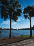 在城市中间的湖 库存照片