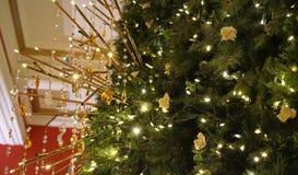 它总是举起施华洛世奇圣诞树的逐年女王维多利亚大厦传统每圣诞节 免版税图库摄影