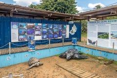 它玛项目Projeto它玛在Boldro村庄-费尔南多・迪诺罗尼亚群岛, Pernambuco,巴西总部设 免版税库存图片