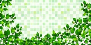 它留下新绿色树背景 免版税图库摄影