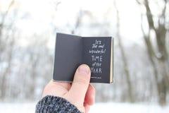 它` s年的最美妙的时期 递拿着与文本的一本书在背景-冬天公园 免版税库存照片