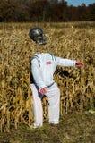 宇航员外籍人 库存图片