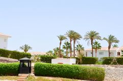 守卫岗位户外温暖的热带异乎寻常的国家温泉背景背景绿色植物棕榈树的木黑卫兵摊 库存照片
