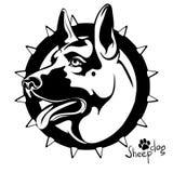 守卫护羊狗的狗s头的黑白图象 库存图片