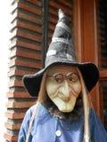 守卫的巫婆 免版税库存照片