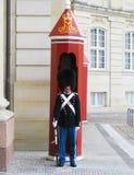 守卫Amalienborg城堡的皇家卫兵在哥本哈根,丹麦 免版税图库摄影