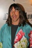 安东尼Kiedis,关・史蒂芬妮 图库摄影