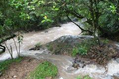 安东河- El瓦尔de安东,巴拿马 库存照片