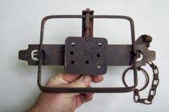安全处理一个古色古香的海狸腿举行陷井 免版税库存图片