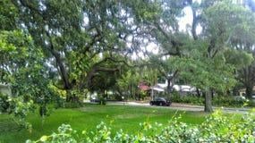 安全港口佛罗里达住宅风景 库存照片