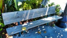安全港口风景的佛罗里达 库存照片