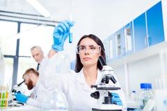 安全玻璃的年轻深色的逗人喜爱的试验室工怍人员分析Th 免版税图库摄影