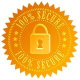 安全的图标 免版税图库摄影