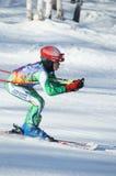 安加尔斯克滑雪队 免版税库存照片