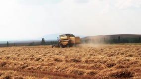 安卡拉,土耳其- 2018年6月23日:在金麦田的巨型黄色运转的麦子收割机组合机器在夏天 股票视频