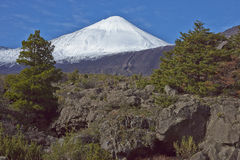 安图科火山火山在拉古纳de Laja国家公园,智利 免版税库存图片