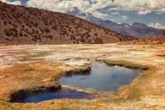 安地斯山的喷泉Junthuma,形成由地热活动,玻利维亚 免版税库存照片