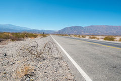 安地斯山的路 免版税库存图片