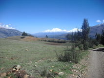 安地斯山的风景 库存图片