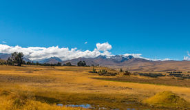 安地斯山的风景 免版税库存图片