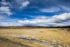 安地斯的altiplano的一片沙漠在玻利维亚 免版税库存照片