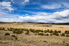 安地斯的altiplano的一片沙漠在玻利维亚 图库摄影