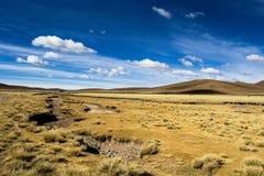 安地斯的altiplano的一片沙漠在玻利维亚 免版税图库摄影