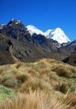 安地斯blanca山脉 库存照片