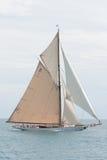 安地比斯赛跑船 库存照片