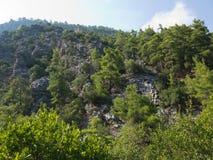 安塔利亚Goynuk峡谷 与树的美丽的山在国家储备 免版税库存照片