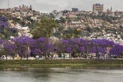 安塔那那利佛地标都市风景 库存照片