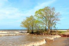 安大略湖海岸线 免版税库存照片