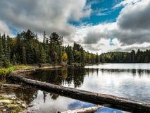安大略湖阿尔冈金省立公园 免版税库存照片